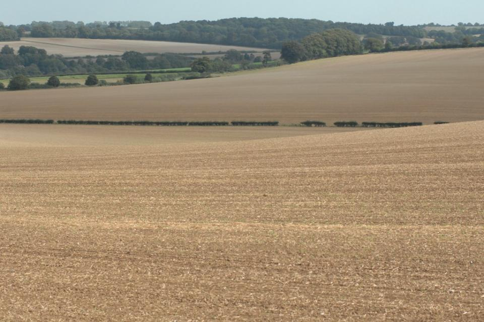 Chalk Hills and Scarps in West Suffolk