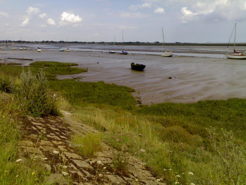Marsh Landform