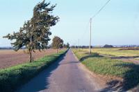 Northfield Road, Ashwell, Hertfordshire (© HCC Landscape)