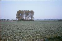 Lowland Village Chalklands + North of Hexton, Hertfordshire (1999) (© HCC Landscape)